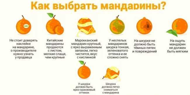 10 полезных свойств мандаринов для красоты и здоровья организма - советы и рекомендации о здоровье на AllMedNews.ru